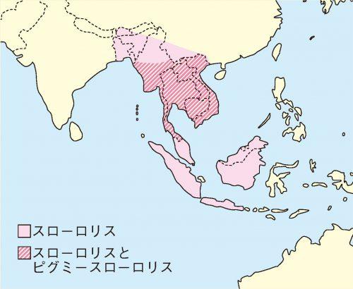 ロリス分布地図